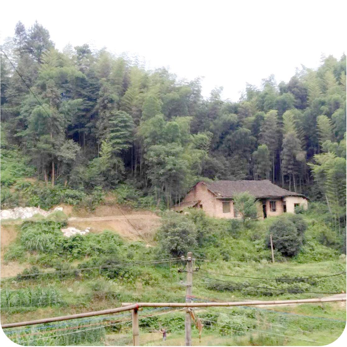 湖南益阳养猪场项目